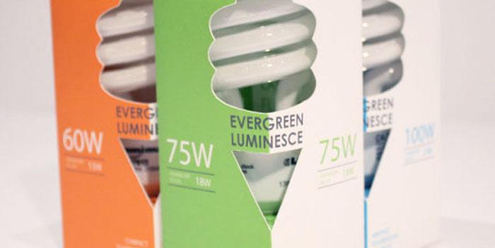 Lights Bulbs