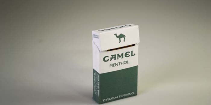 Camel Menthol