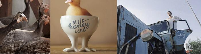 Milk & Honey Land10