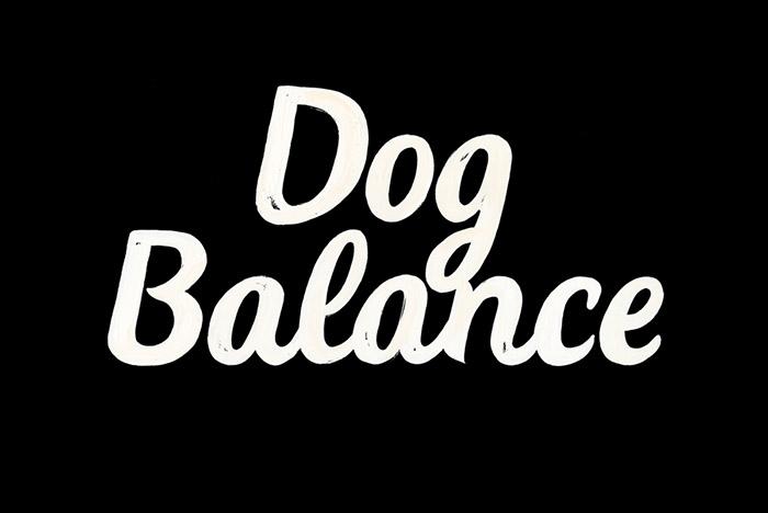 Dog Balance3