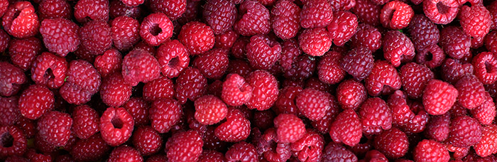 Picked raspberries are pictured in the village of Zeljezno Polje