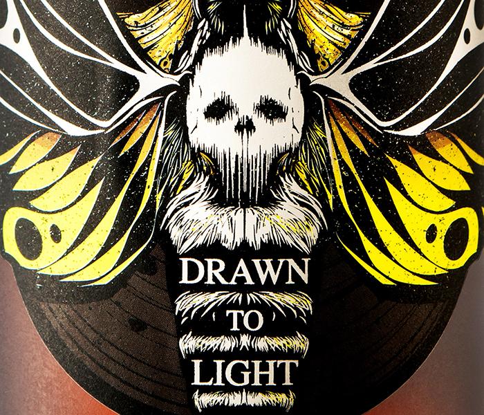 drawn-to-light-05