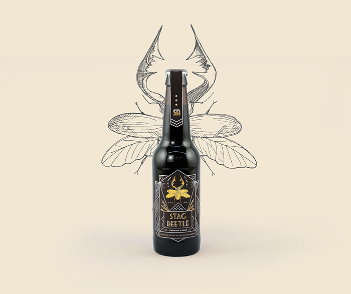 stag-beetle-brew3