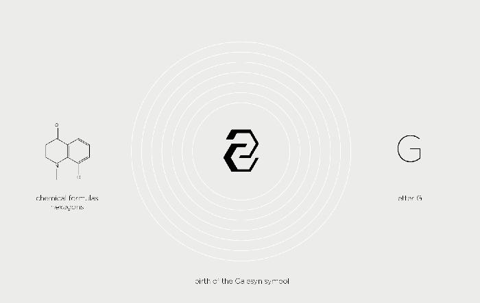 GALESYN branding3