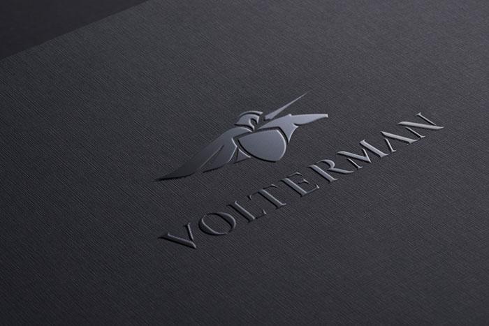 Volterman_Backbone Branding 21