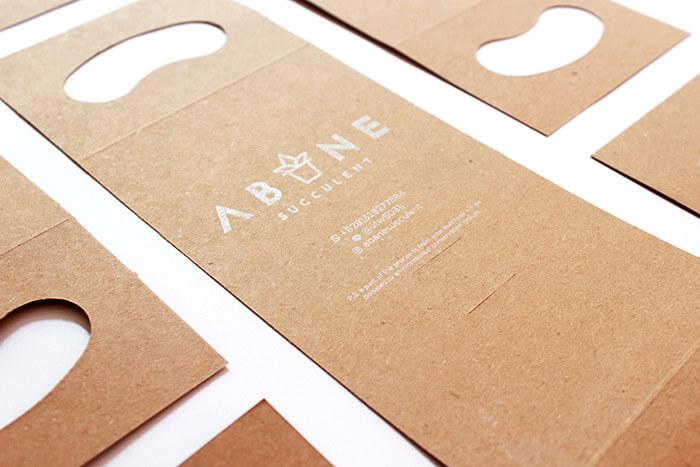 ABANE Succulent Visual Branding4