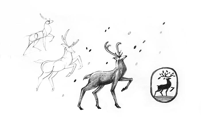 logo sketch-animal-deer-bratus